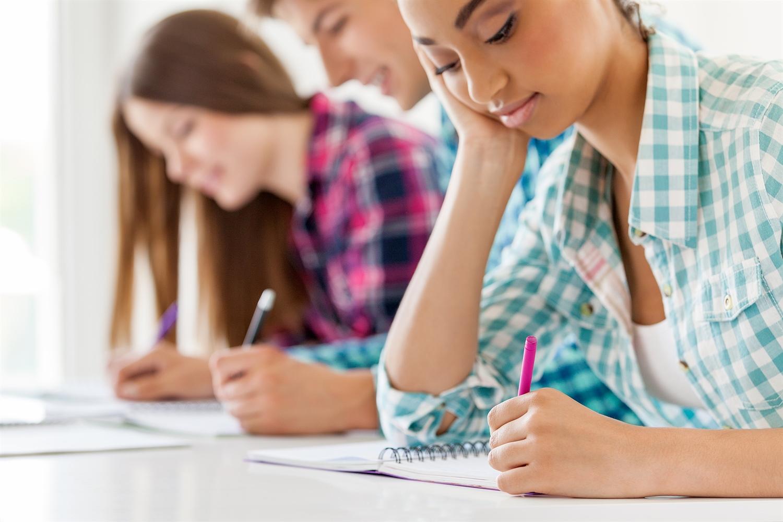 Bentley university supplement essay